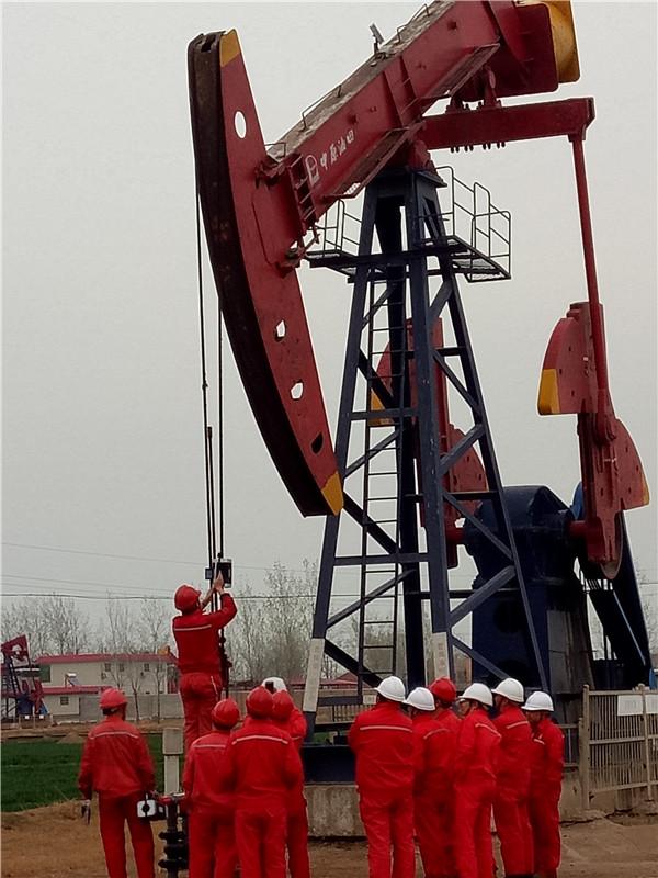 石油行业应用案例